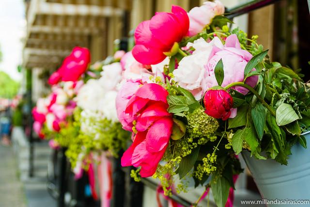 Flores en los portales de las casas