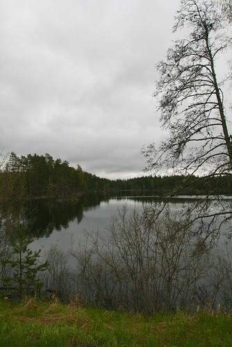 lake nature sweden