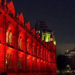 Natural History Museum at night - London DSC01666.jpg