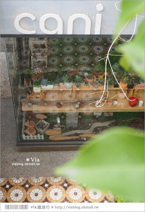 【台中新景點】中興街一巷‧范特喜「綠光計劃」~自來水公司舊眷宿舍的新藝文空間22