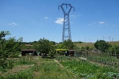 05-jardins ouvriers de Montereau