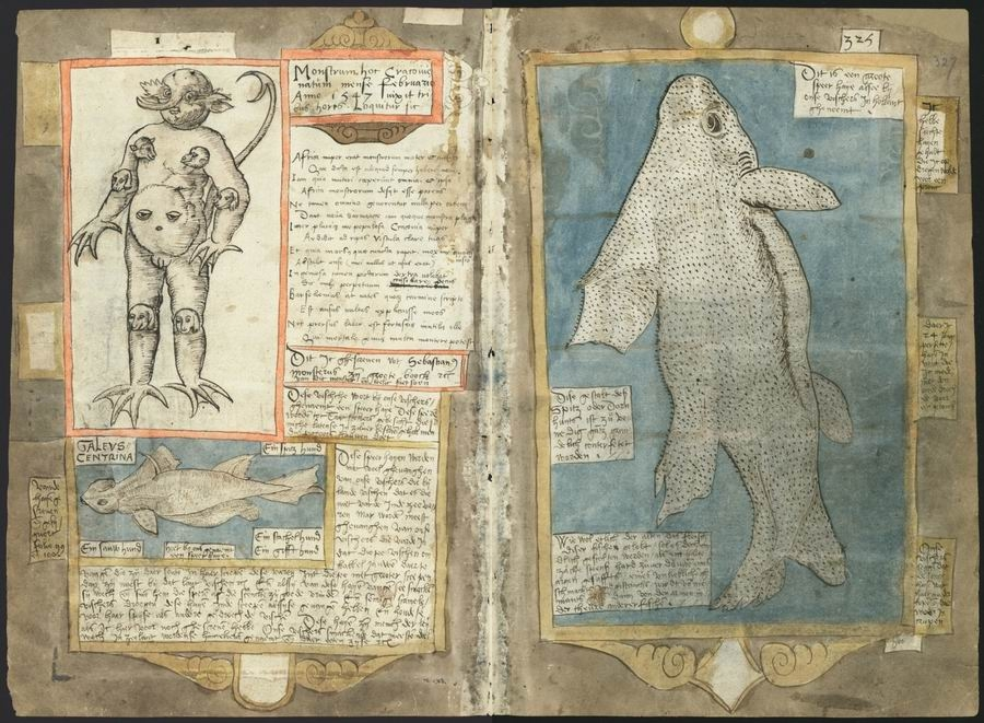 Adriaen Coenen's Fish Book (1580)