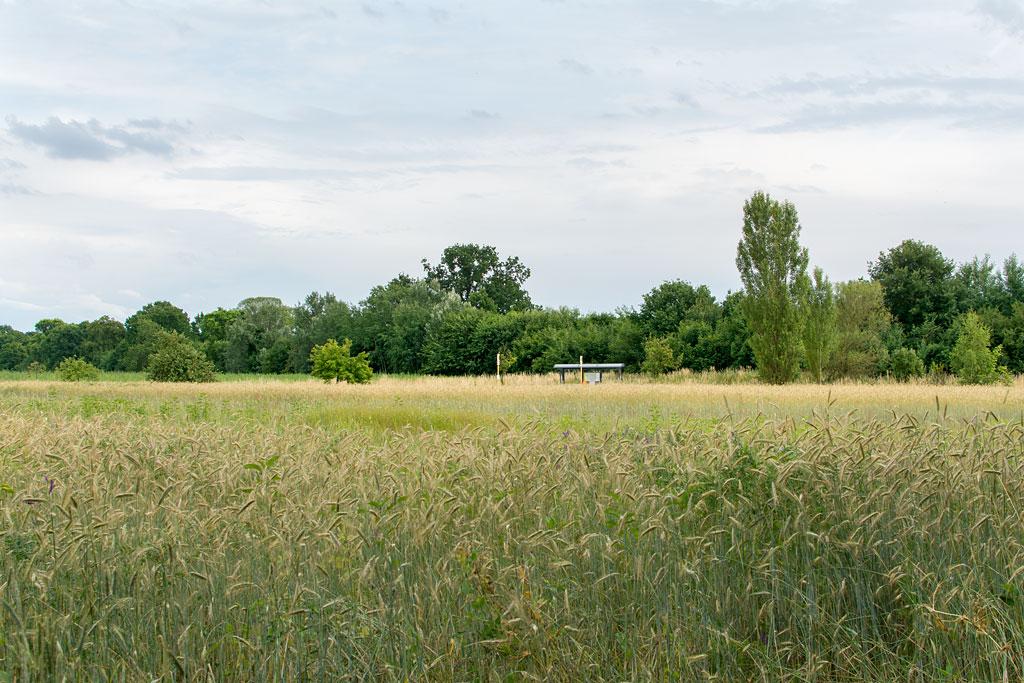 Vierfelderhof