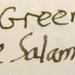 Small photo of Stipula Musk Green vs Diamine Salamander