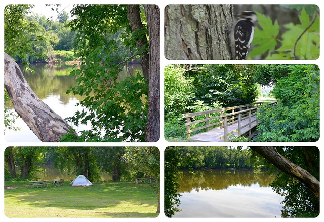 Wildlife and wilderness at every turn at Canoe Landing Primitive Campground at James River State Park