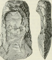 "Image from page 179 of ""The ancient stone implements, weapons, and ornaments, of Great Britain"" (1872)"