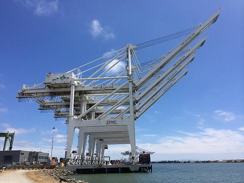 Oakland cranes 2