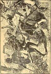 """Image from page 211 of """"Captain William Kidd, and others of the pirates or buccaneers who ravaged the seas, the islands, and the continents of America two hundred years ago"""" (1874)"""