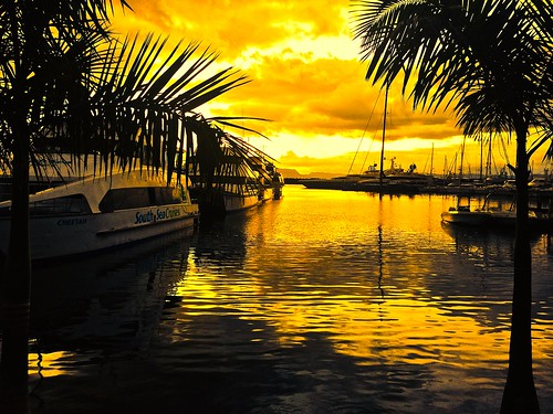 trees sea orange yellow sunrise boats pretty colours view harbour stunning colourful photostream