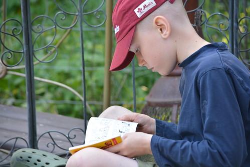 Monkey reading on the garden seat