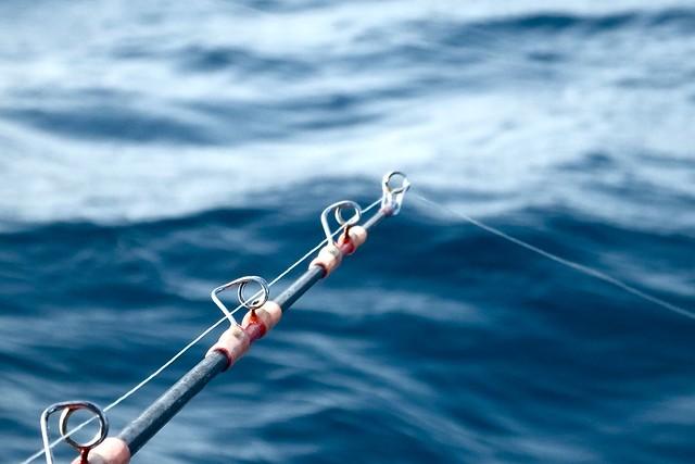 14884772824 ce99175c0b for Deep sea fishing corpus christi