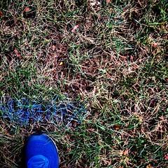#charlotterunningco #runcharlotte #runmyerspark #freedompark
