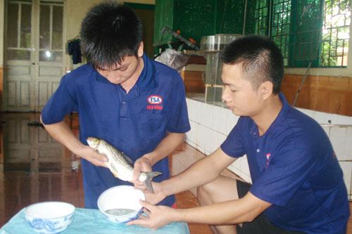 Cán bộ kỹ thuật của Xí nghiệp Thái Giang tiến hành cho cá đẻ