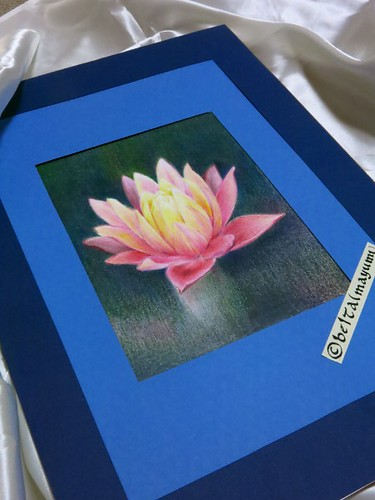 2014_09_02_waterlily_06_s