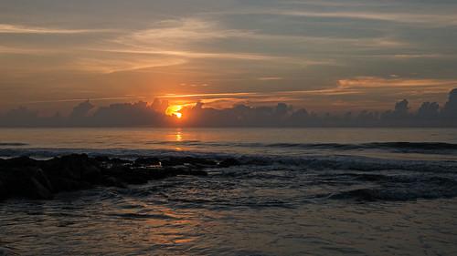 sunrise pawleysisland