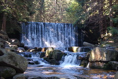stream, waterfall, water feature, water, river, body of water, watercourse, forest, wilderness, state park,