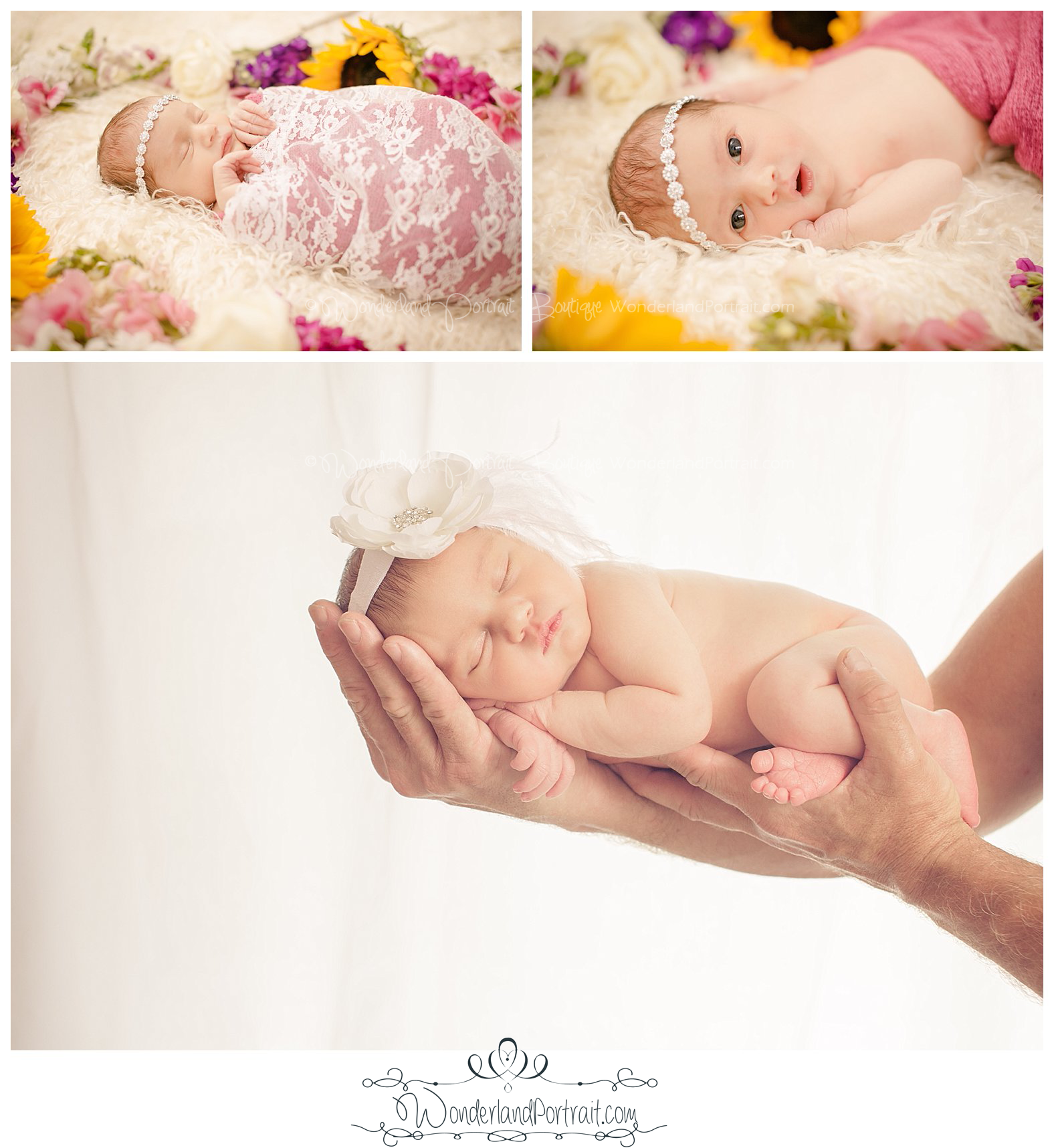 Bucks County Newborn Photographer  www.WonderlandPortrait.com