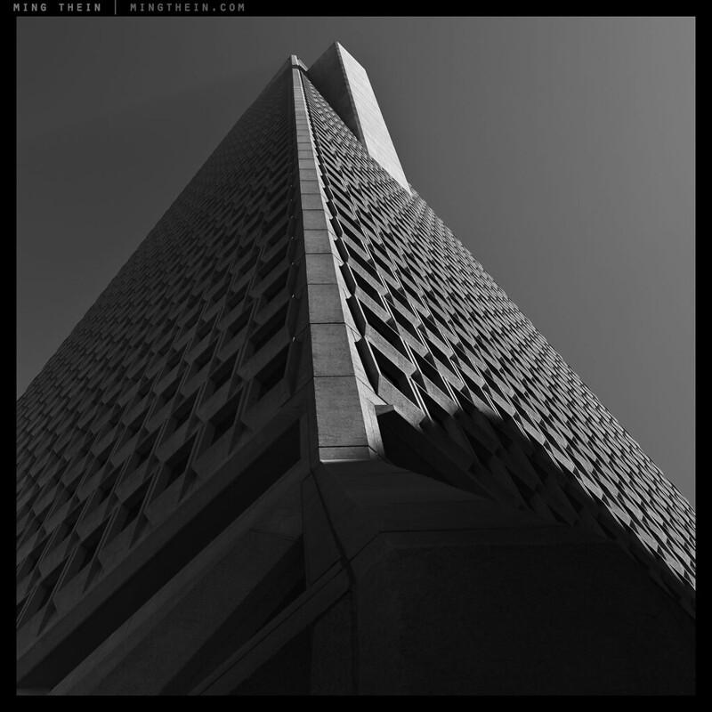 45_64Z3459 verticality XLV copy