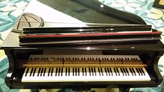 computer component(0.0), celesta(0.0), string instrument(0.0), electronic device(0.0), pianet(0.0), harpsichord(0.0), fortepiano(0.0), electronic keyboard(0.0), music workstation(0.0), digital piano(0.0), electronic instrument(0.0), string instrument(0.0), piano(1.0), musical keyboard(1.0), keyboard(1.0), spinet(1.0), electric piano(1.0), player piano(1.0),