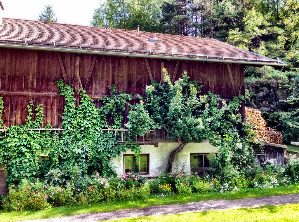 Tyrolean cottage