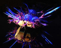 Chihuly's Blue and Purple Boat