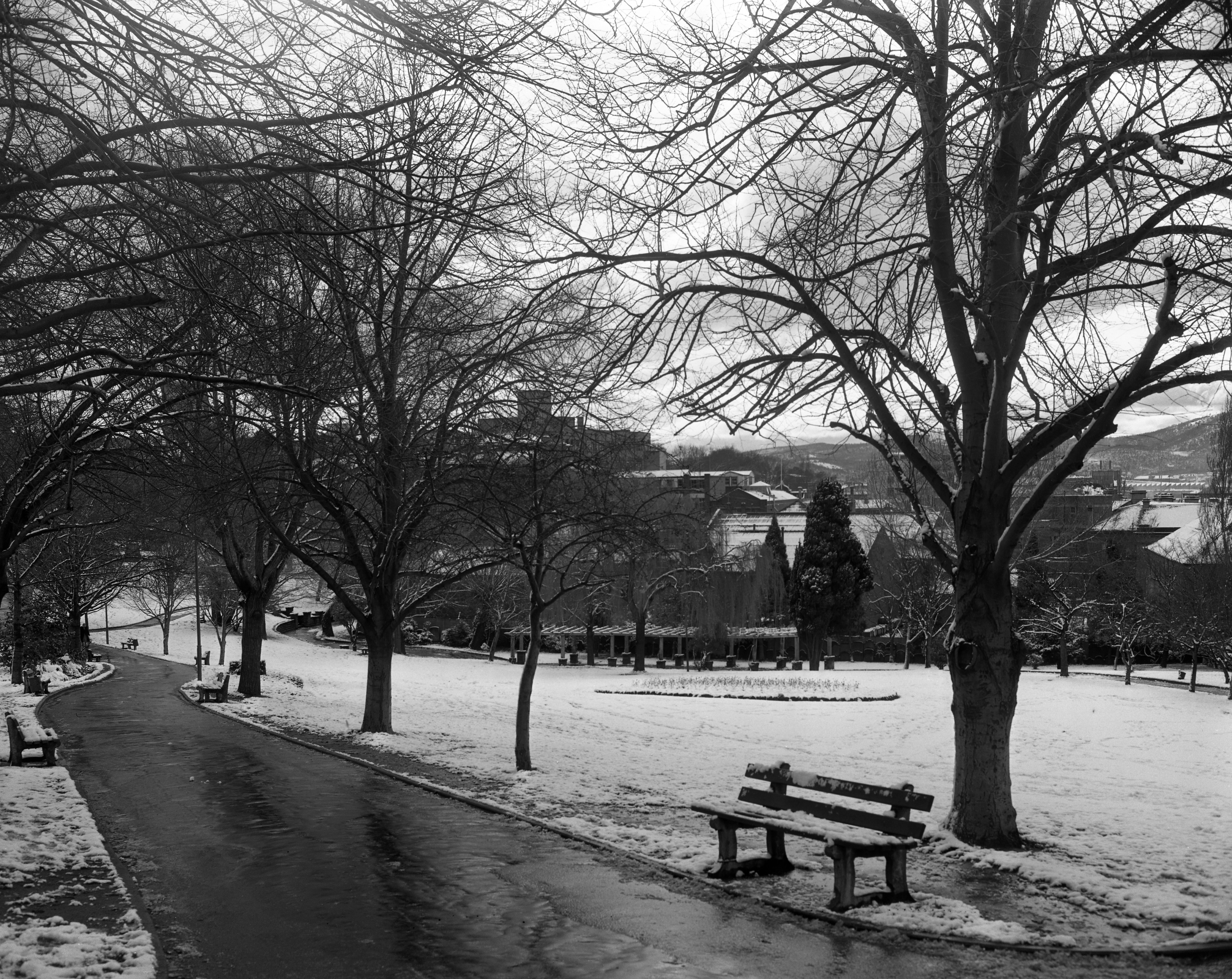 St David's Park - Hobart under snow circa 1951-1973