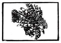 Lion Fish - Linocut