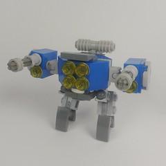 Salticidae Frame - Classic Space Team