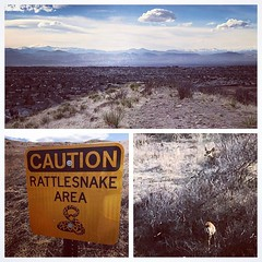 Post work hike, coasting into the weekend  #Colorado #lonetree #bluffsregionalpark