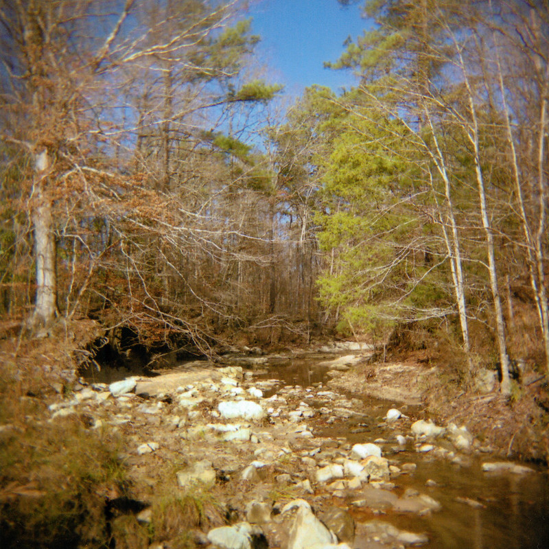 Creek Off the Natchez Trace