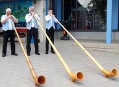 alphorn, woodwind instrument, wind instrument,