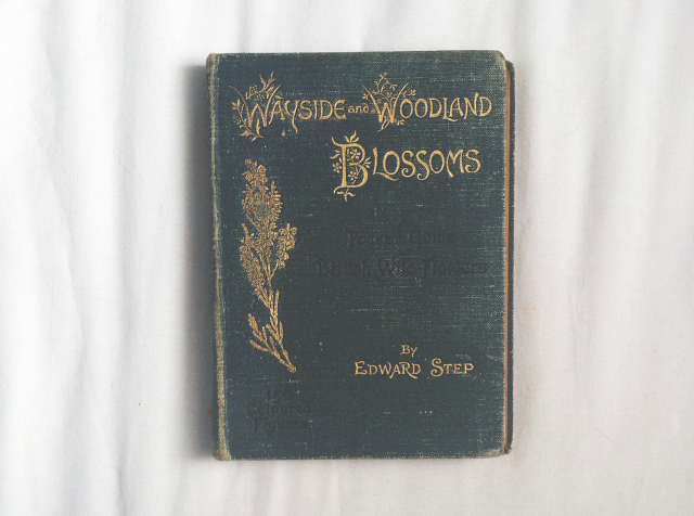 wayside and woodland blossoms edward step book review blog lifestyle vivatramp uk