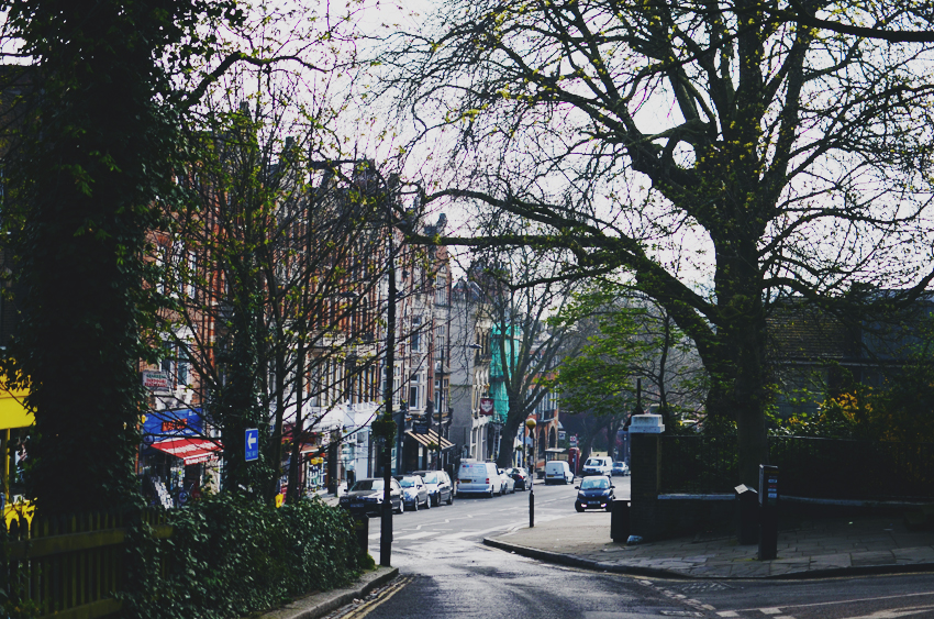 5 hampstead swoopy street