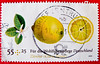 beautiful stamp Germany 55c + 25c charity (lemon, Citronnier, limone, Zitrone,  ليمون  citrus limon, Limão, レモン, el limonero, 柠檬, Citrom, Лимон) poste timbres Allemagne sellos Alemanha selos porto franco francobolli Germany postzegel 우표 독일 유럽 sellos 55c by stampolina