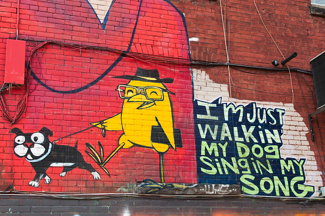 i'm just walkin my dog singin my song -- toronto graffiti alley