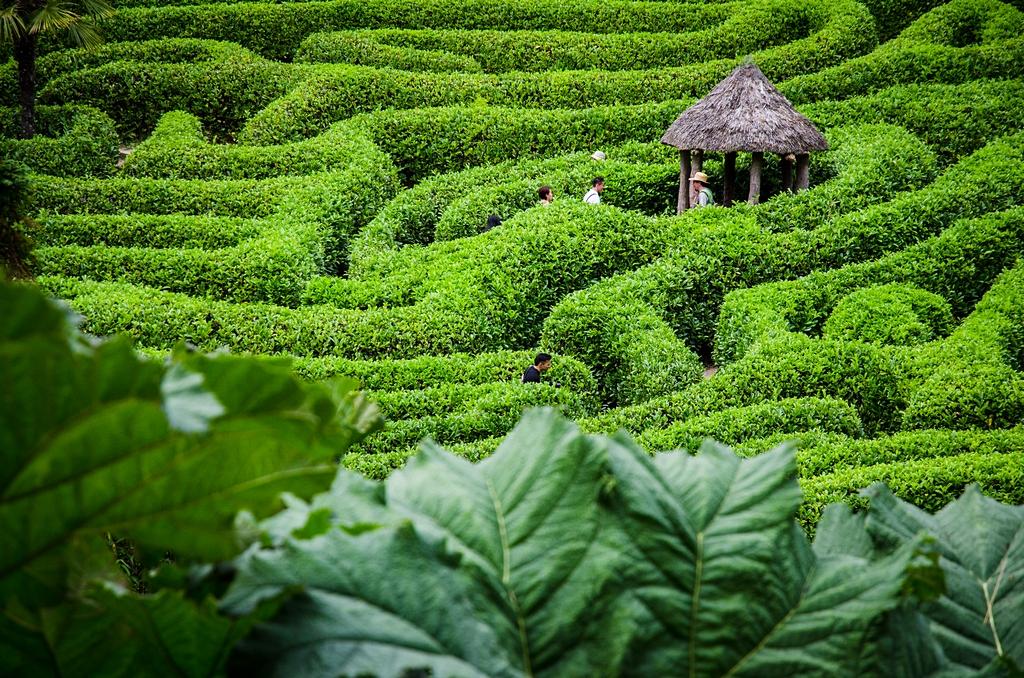 Jardín de Glendurgan