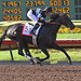 Shared Belief wins the Los Al Derby