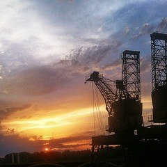 Back to those cranes... #sunset #silhouette #crane