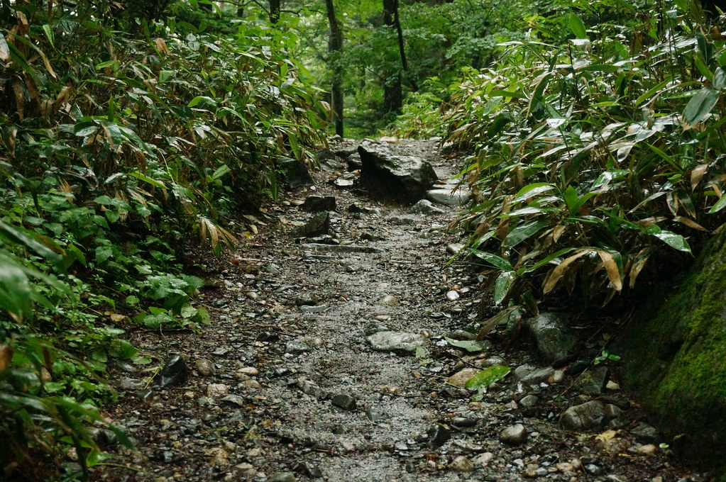 Footpath at Kamikochi