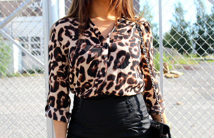 leopard 149