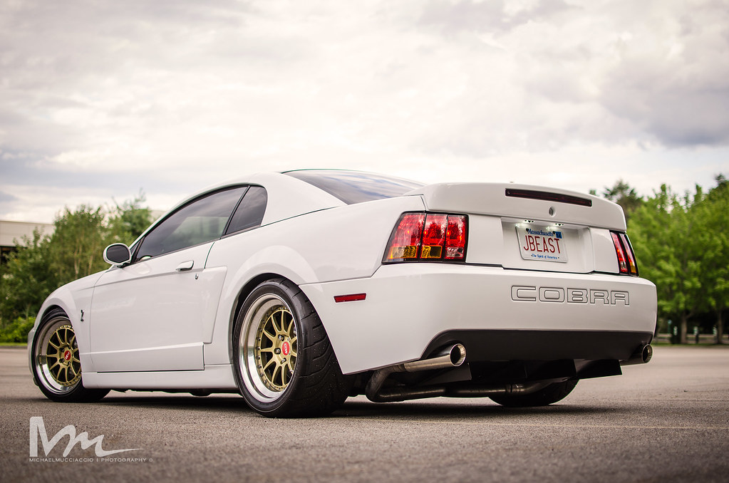 04 Mustang Slammed Related Keywords 04 Mustang Slammed Long Tail Keywords Keywordsking