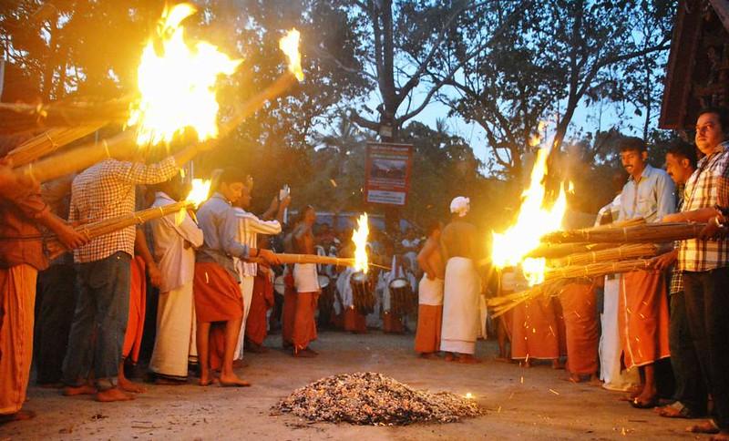 09 Totaima (Kerala) (14)