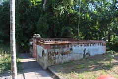 半月池旁的小魚池,概念就像天然的冰箱、水廚房。