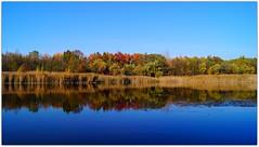 Lake Wąsik