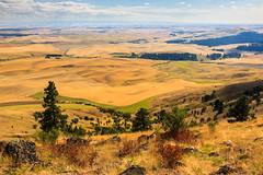 South on Kamiak Butte