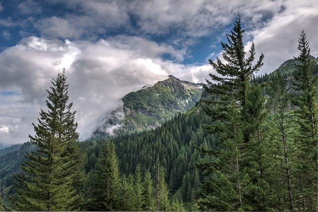 20140815-Mt Rainier-1166_7_8-HDR.jpg