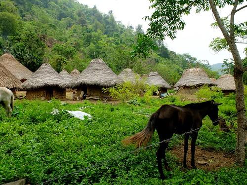 indigenousculture