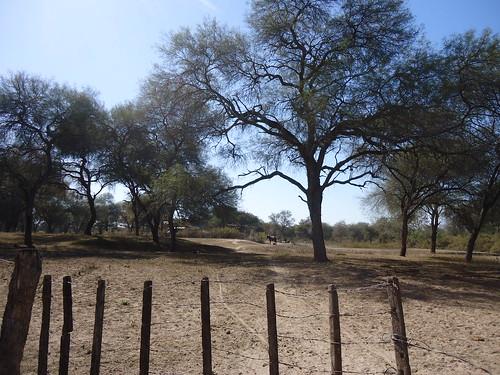 Autor: Microregión San Pedro - La Esperanza