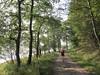 Inveraray: Dubh Loch Walk