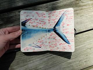 my sketchbooks2